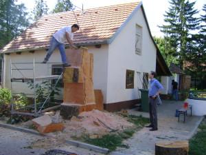 Stara platana postaje skulptura propetog konja 001